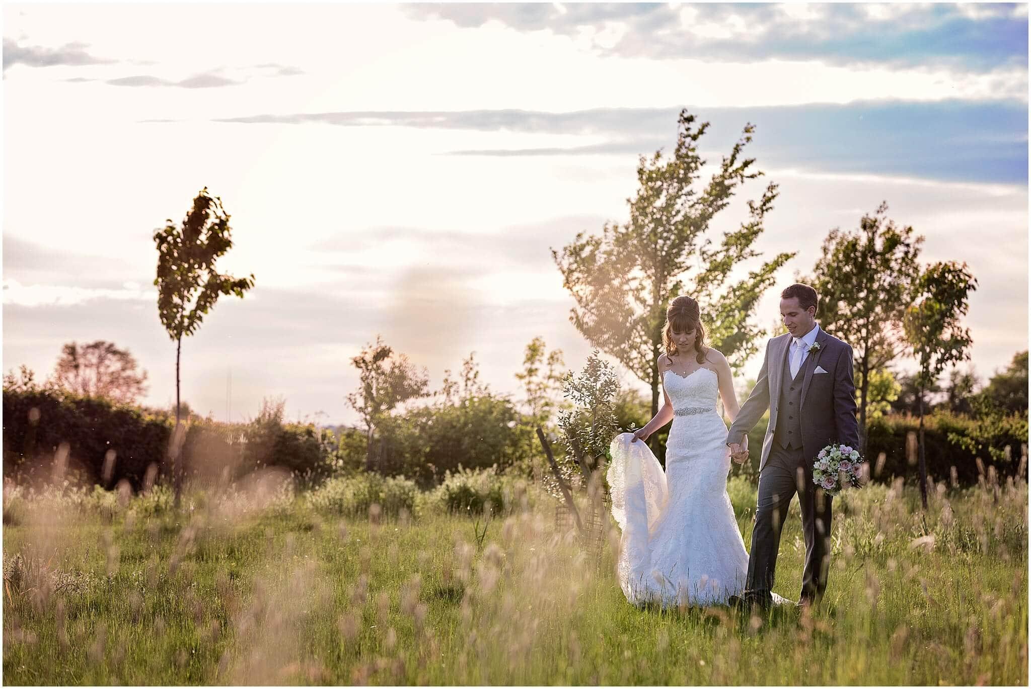Romantic meadow walk at South Farm