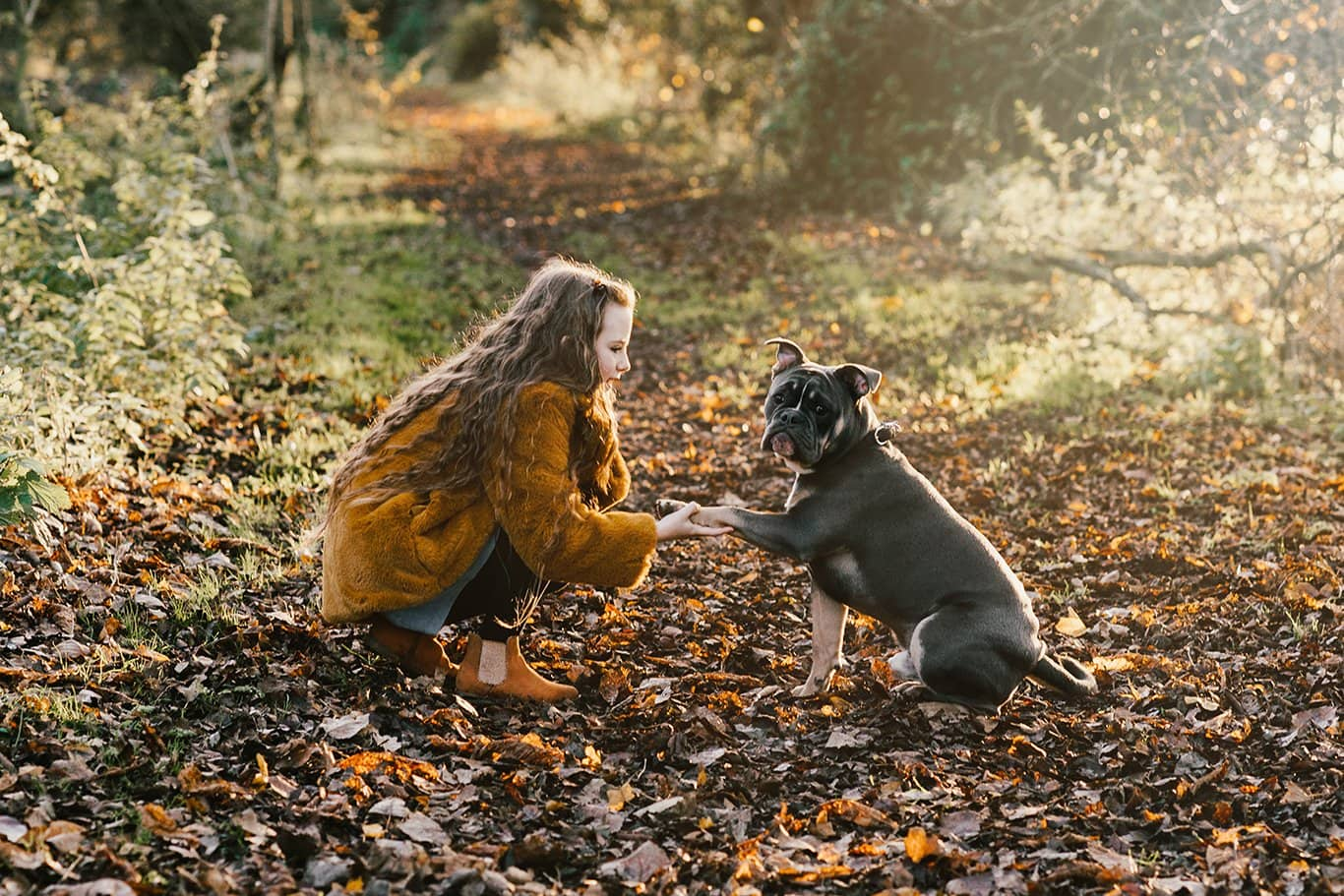 Girl and a dog in the winter sun