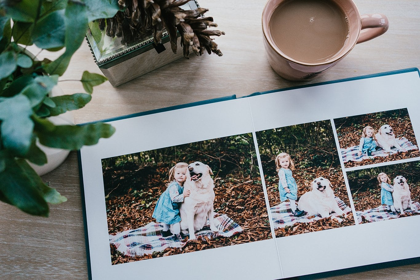 Album full of family photos